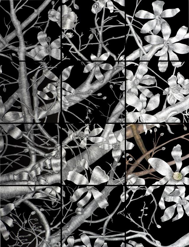 Art Capture by Lightbox